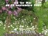 espace-garden\'s Daniel 2007